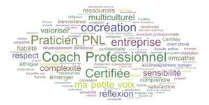 Cocréation et Certification : coaching individuel et d'équipe